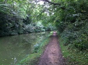 Grand Junction (Union) Canal, near Tring