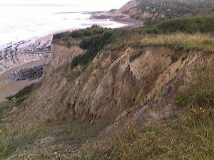 Eroding cliffs near Fairlight Cove